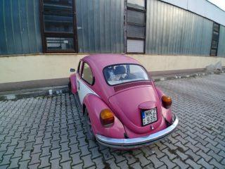 Travel (VW) Bug